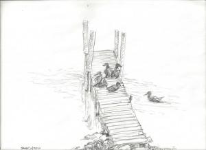 ducks_on_dock